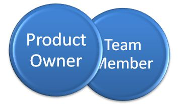 Product Owner Team Member